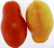 Tomatoe Twins Stock Photography