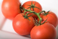 Tomatoes 1. Bunch of fresh tomatoes on a white plate royalty free stock image