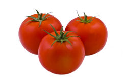 Tomatoes. Red tomatoes on white background royalty free stock photos