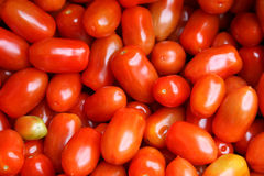 Tomatoes. A bunch of colorful little tomatoes for sale on a market Royalty Free Stock Photo