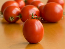 Tomatoes. On the wooden table. Shallow dof Stock Image
