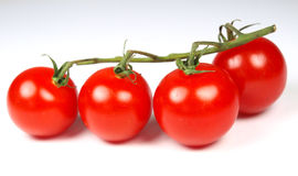 Tomatoes. Ripe tomatoes isolated on white Stock Photography