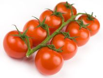 Tomatoes. A vine of tomatoes on a white background Royalty Free Stock Images