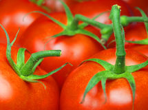 Tomatoes. Macro photo of ripe tomatoes abstract background stock photo