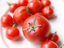 Tomatoes. A plate with many tomatoes Royalty Free Stock Photography