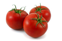 Tomatoes . Stock Images