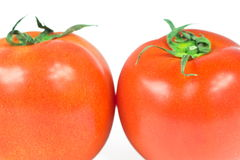 Tomatoes. Two tomatoes close up on white Stock Image