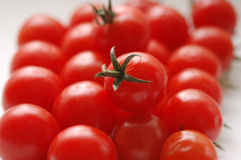 Tomatoes. In the winter prepared for cooking Stock Images