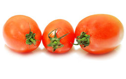 Tomatoes. A group of some tomatoes Stock Photo