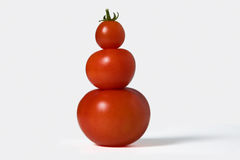 Free Tomatoes Royalty Free Stock Images - 12741909