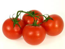 Tomatoes. Isolated on white background stock image