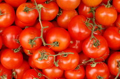 Tomatoes. Some fresh tomatoes on the market Royalty Free Stock Photography