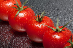 Tomatoes. Little tomatoes with green and water drops Royalty Free Stock Photo