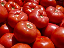 Tomatoes. Juicy red tomatoes at a farmer's market Royalty Free Stock Image
