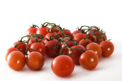 Tomatoes. A group of tomatoes in front of white background Stock Images