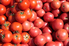 The tomatoes. Selling in the small city Royalty Free Stock Image