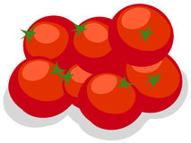 Tomatoes. Illustration of isolated tomatoes on white background Royalty Free Stock Photography