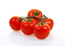 Tomatoes. Fresh tomatoes on a white background Stock Photo