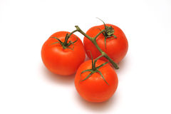 Tomatoes. Isolated on white background Royalty Free Stock Images