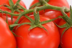 Tomatoes. In close Stock Images