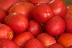 Tomatoes. On top of each other Stock Images