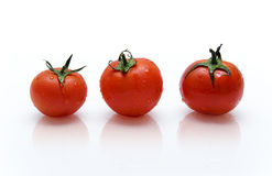 Tomatoes. Three red tomatoes with drops of water on the reflective surface Stock Image