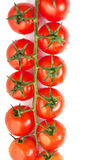 Tomatoes. Some fresh ripe cherry tomatoes on a branch isolated over white background Stock Image