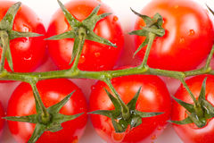 Tomatoes. Some fresh ripe cherry tomatoes on a branch Royalty Free Stock Photos