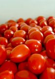 Tomatoes. A large amount of small tomatoes stacked on a surface with selective focus Stock Images