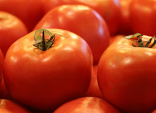 Tomatoes. Fresh and shiny tomatoes in a market stand Royalty Free Stock Image