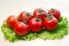 Tomatoes. Fresh tomatoes on lettuce leaf Royalty Free Stock Photos