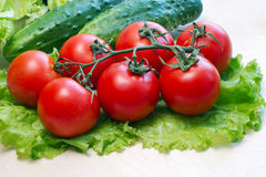 Tomatoes. Fresh tomatoes on lettuce leaf Stock Photo