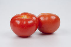 Tomatoes. Fresh tomatoes on a white background Stock Image