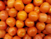 Tomatoes. Wallpaper of Tomatoes. Take pleasure with these professionally retouched high quality image royalty free stock photos