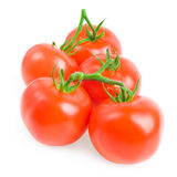 Tomatoes. Ripe tomatoes on white background Royalty Free Stock Photography