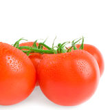 Tomatoes. Ripe tomatoes with water drops on the white background of isolation Stock Photo