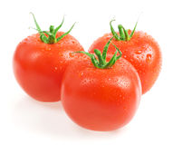 Tomatoes. Closeup with water drops Royalty Free Stock Images