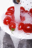 Tomatoes. Under the water jet Royalty Free Stock Photography