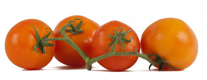 Tomatoes. Organic red tomatoes  on white background Stock Photography