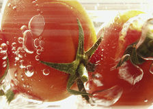 Tomatoes. Two red tomatoes in babbling water Stock Image