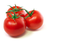 Tomatoes in 3. Fresh bunch of 3 tomatoes Stock Photography