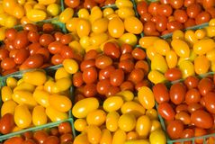 Tomatoes. Fresh tomatoes on display at a farmer's market in Minneapolis Stock Photography