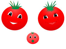 Tomatoes. Vector illustration of happy tomato family Stock Illustration