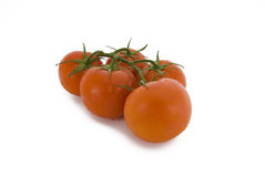Tomatoes. Tomatoes on a white background Stock Photography