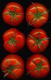 Tomatoes. Six fresh tomatoes on black background from the top Stock Photography