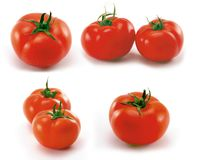 Free Tomatoes Royalty Free Stock Photo - 4334935