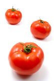 Tomatoes. Isolated on white background stock images