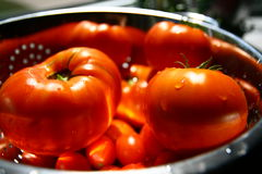 Tomatoes. A shot of beefsteak and cherry tomatoes from my garden, right after harvesting Stock Image