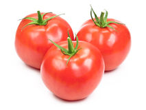Tomatoes. Three tomatoes isolated on white Royalty Free Stock Photos
