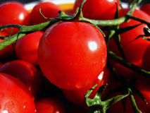 Tomatoes. Closeup picture of red tomatoes Royalty Free Stock Photos